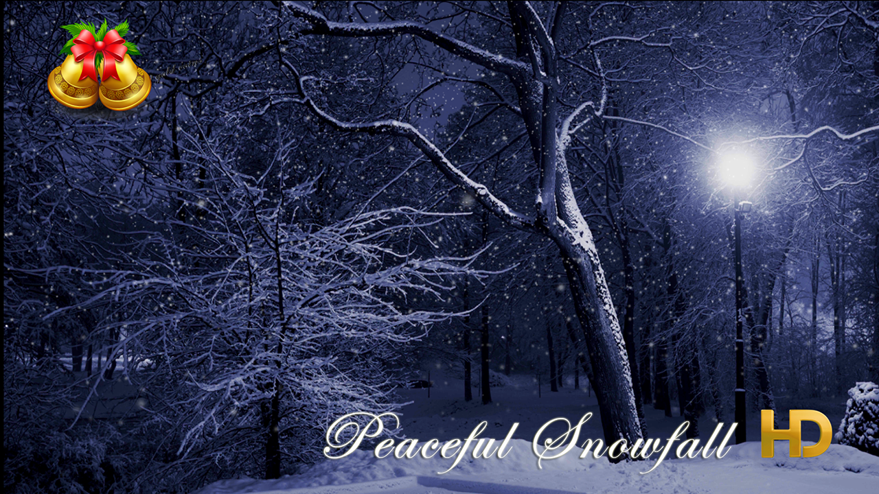 Peaceful Snowfall HD - 13