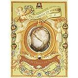 La Fabbrica Del Panforte Ricciarelli di Siena Igp Scatola (Gluten Free), Confezione da 2 x 250 g