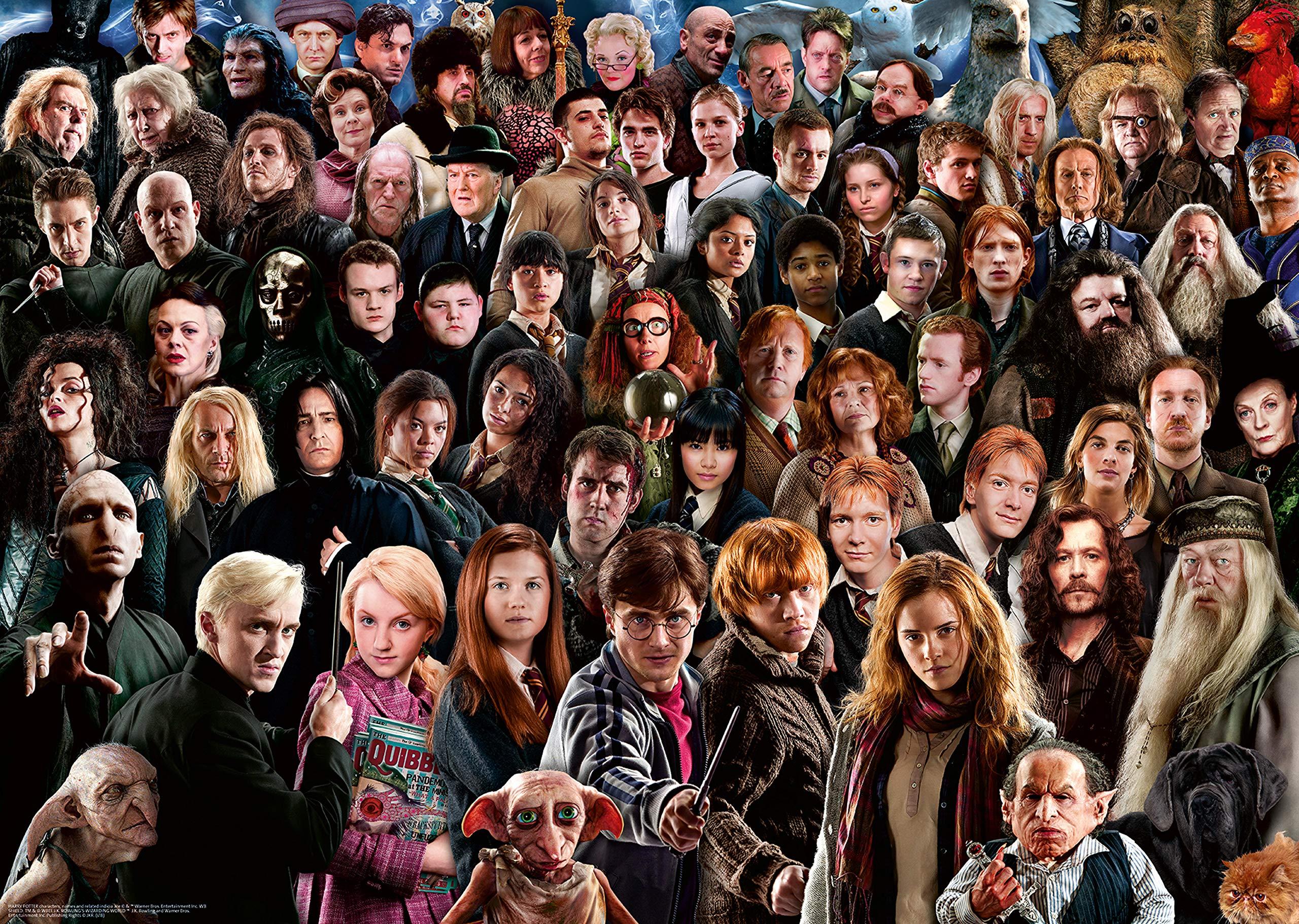 Ravensburger-14988-Harry-Potter-Challenge-Puzzle-1000-Teile-Mehrfarbig