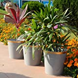 Ecofynd® 10 inches Round Metal Planter | Indoor Outdoor Balcony Patio Plant Pot | Home Garden Office Flowering Container Cove