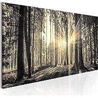 murando - Bilder Wald 135x45 cm Vlies Leinwandbild 1 TLG Kunstdruck modern Wandbilder XXL Wanddekoration Design Wand…