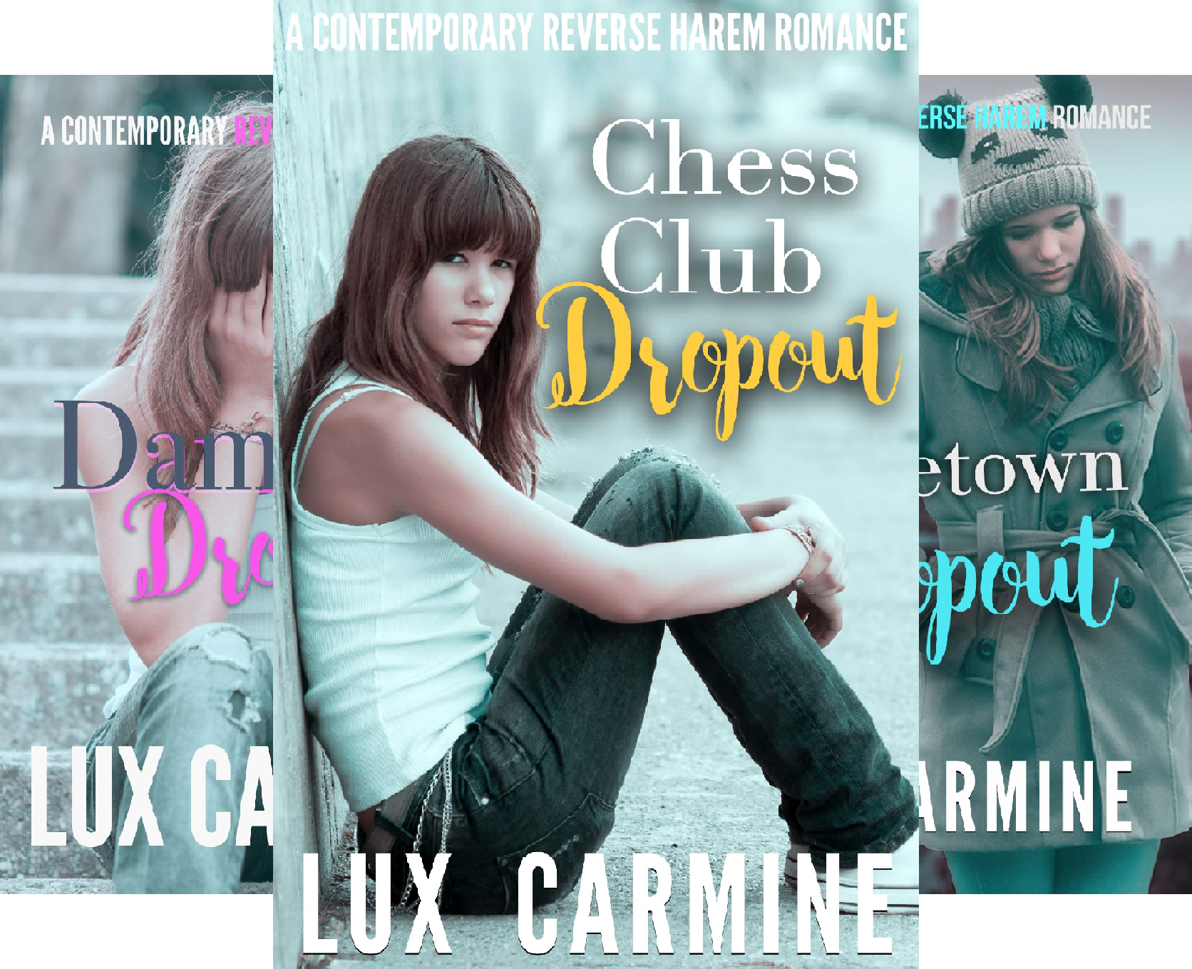 Dropout Series (4 Book Series)