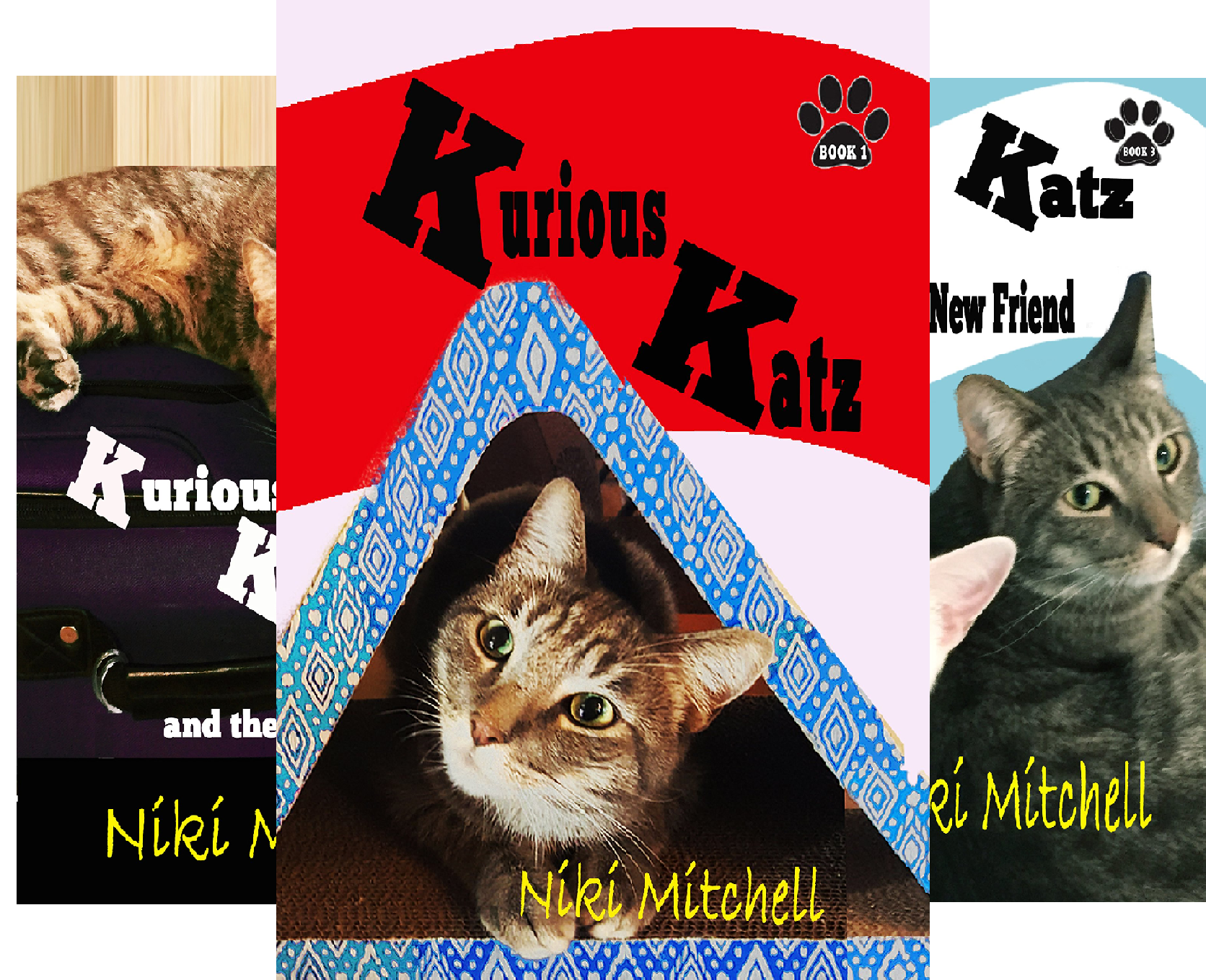 A Kitty Adventure for Kids and Cat Lovers (8 Book Series)