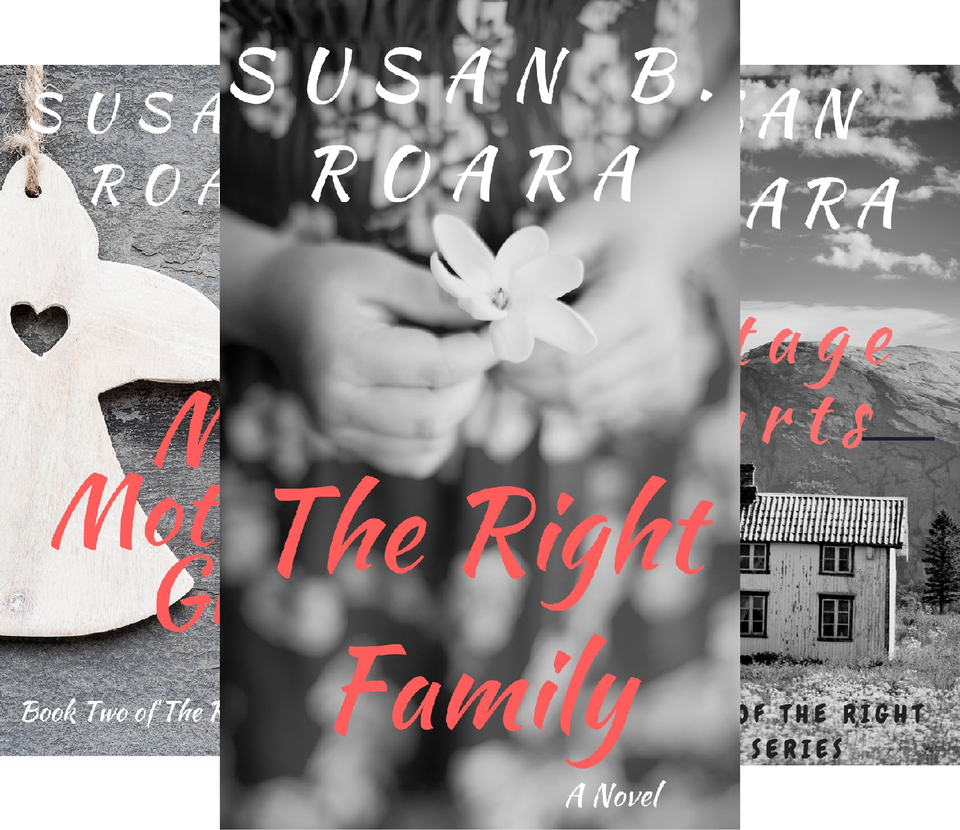 The Family Series (3 Book Series) book cover
