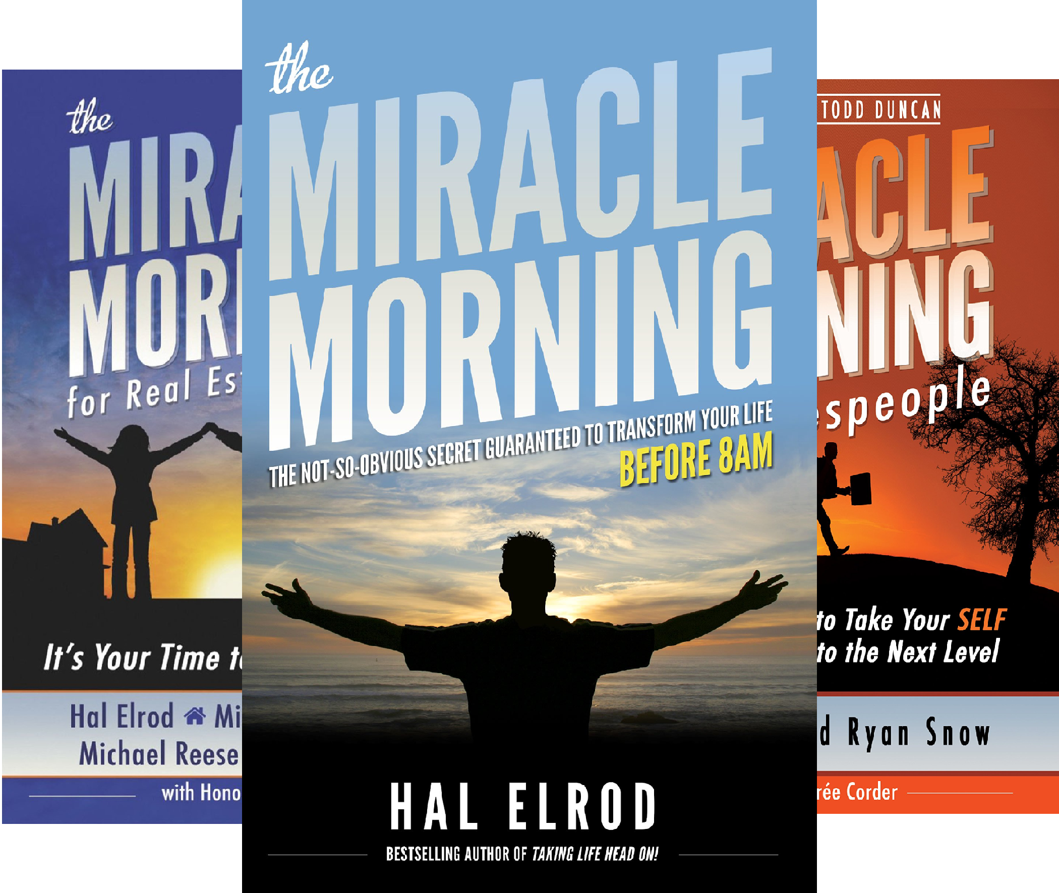 The Miracle Morning (14 Book Series)
