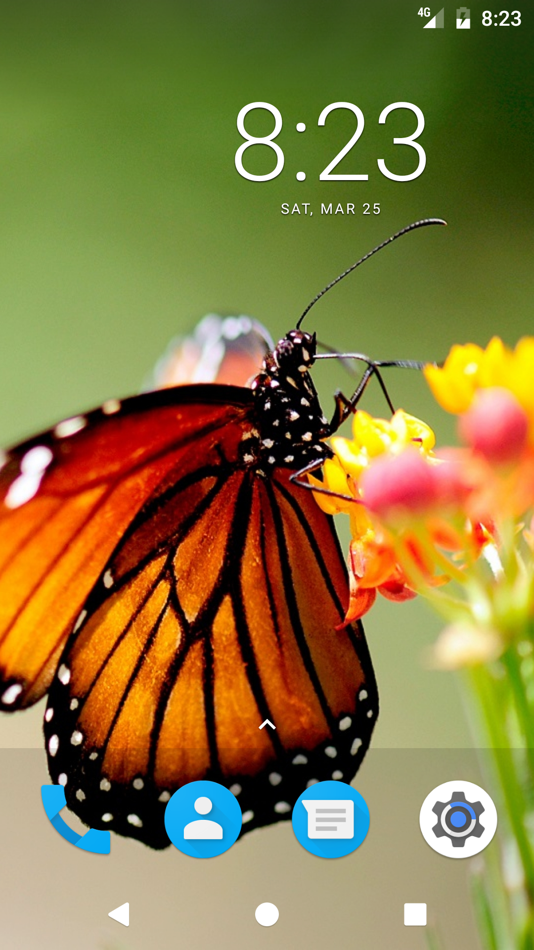 Butterfly HD Wallpapers: Amazon.it: Appstore per Android