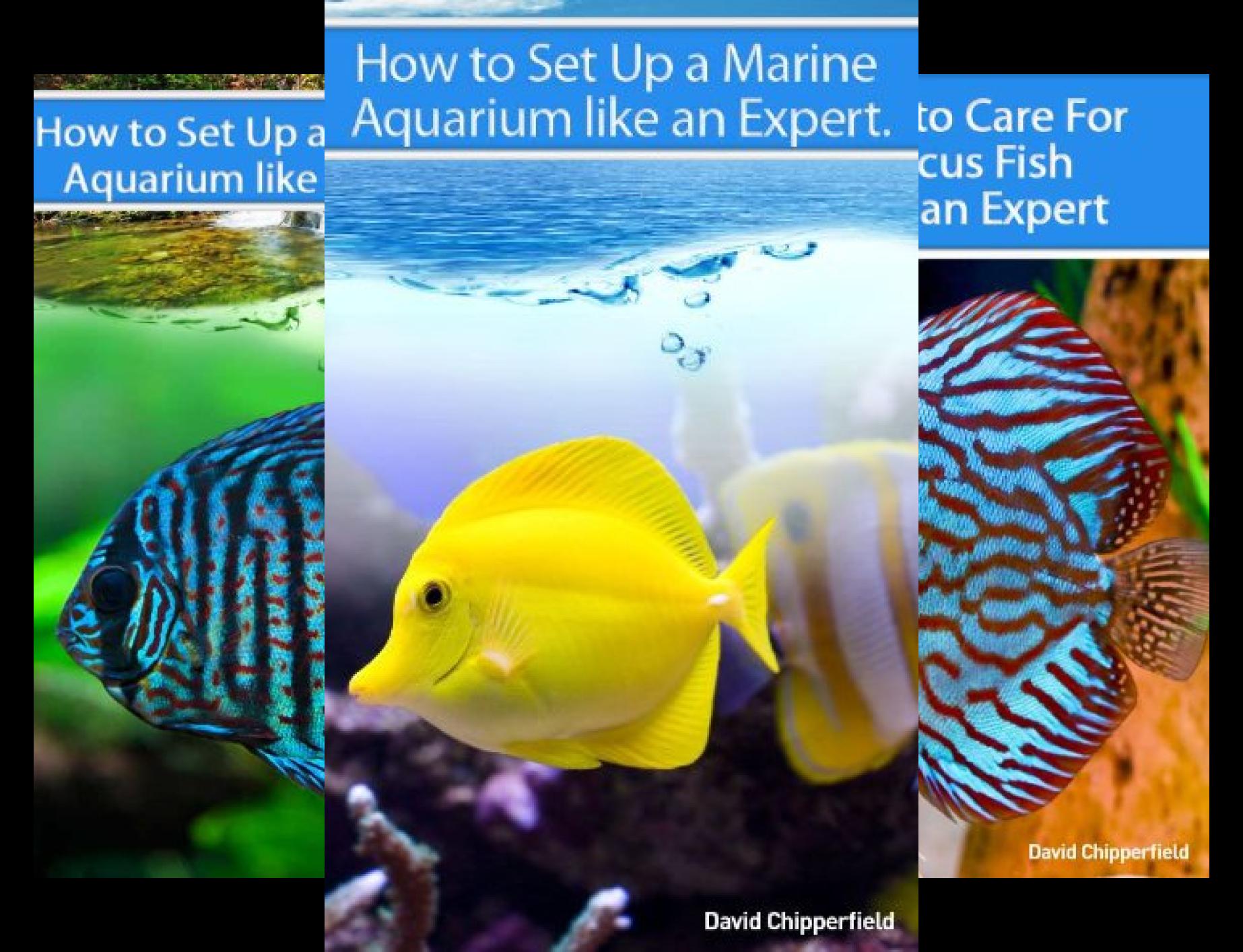 Aquarium and Turtle Mastery (5 Book Series)