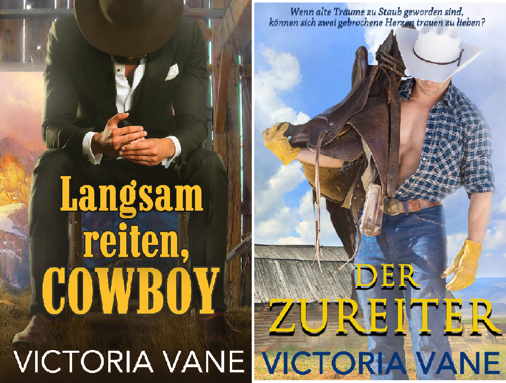 Heiße Cowboy-Nächte (Reihe in 2 Bänden)
