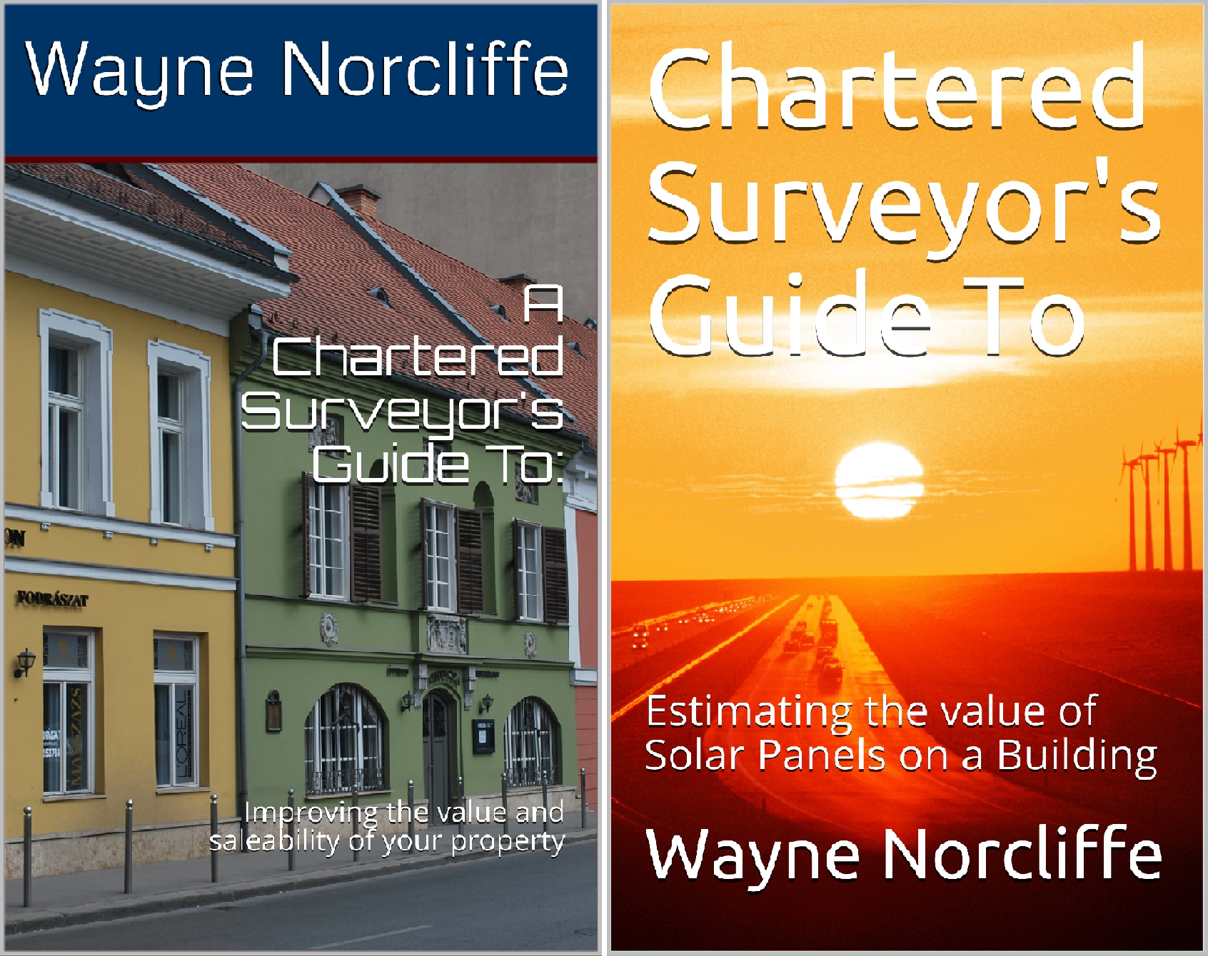 Chartered Surveyors Guide To (2 Book Series)