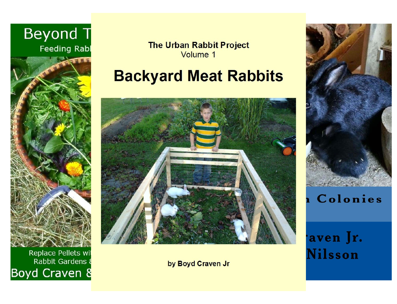 The Urban Rabbit Project (3 Book Series)