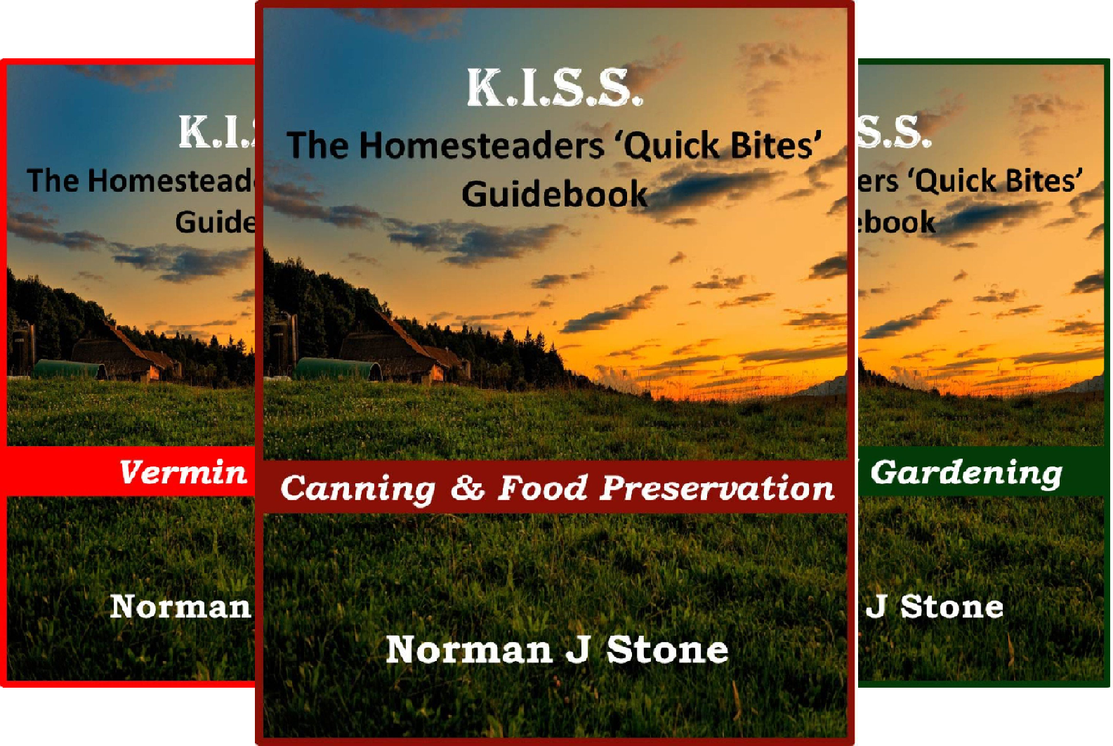 K.I.S.S Quick Bites (6 Book Series)