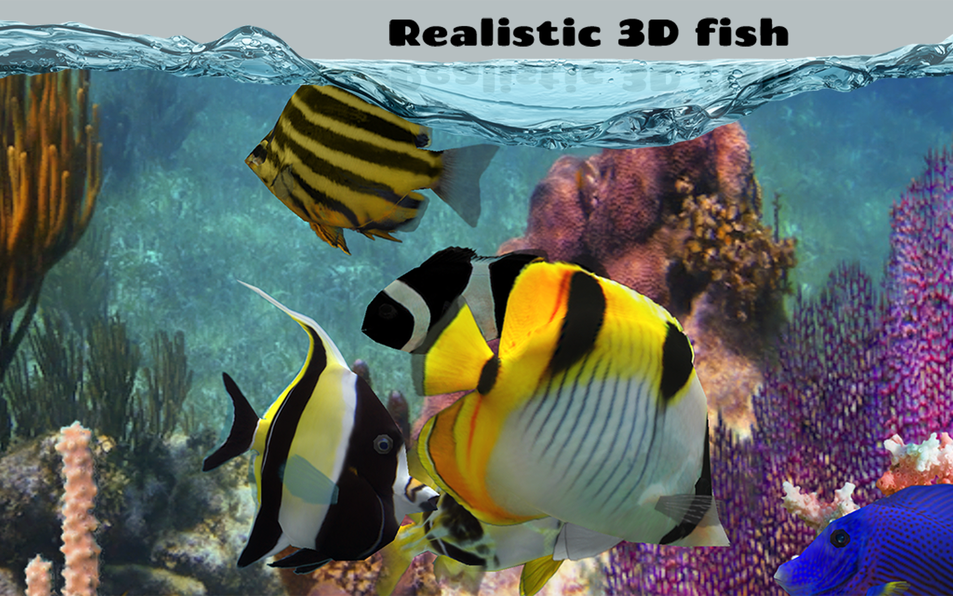 Fish farm 2 appstore for android for Fish farm 3