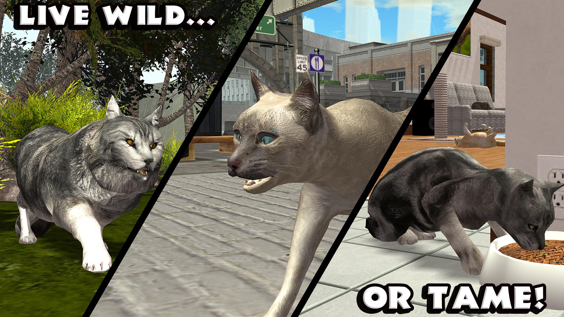 Ultimate Cat Simulator Gluten Free Games