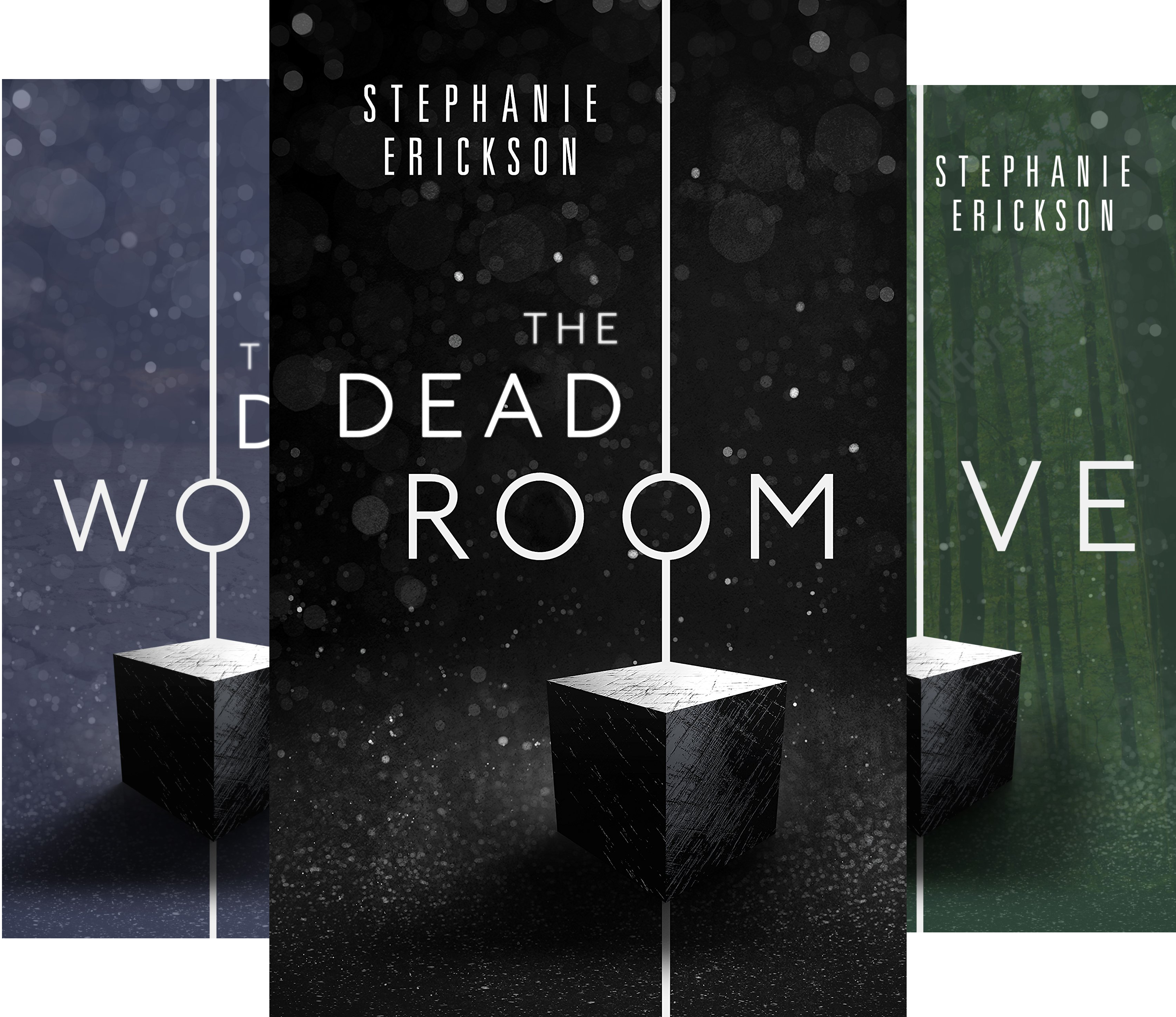The Dead Room Trilogy (3 Book Series)