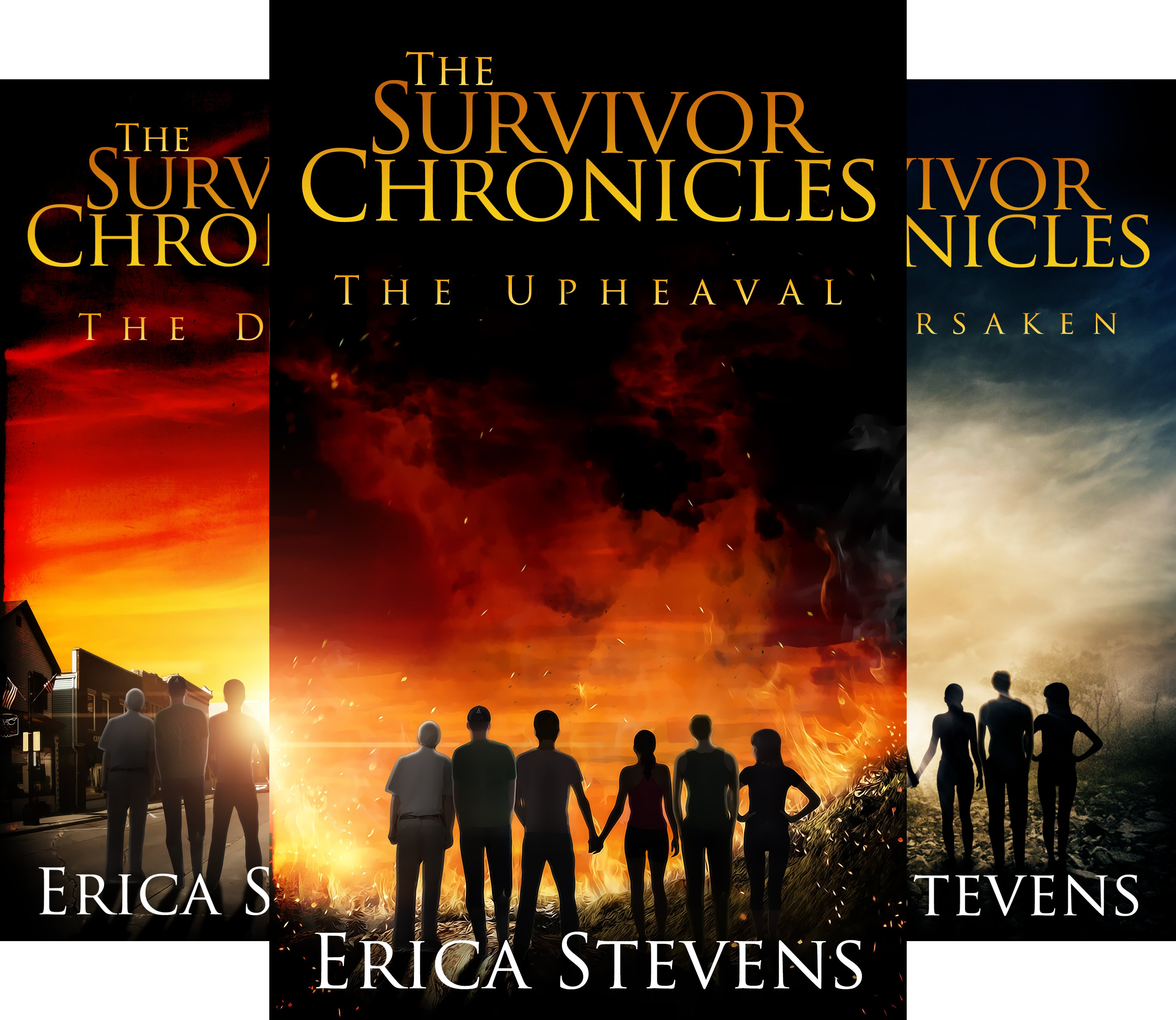 The Survivor Chronicles (4 Book Series)