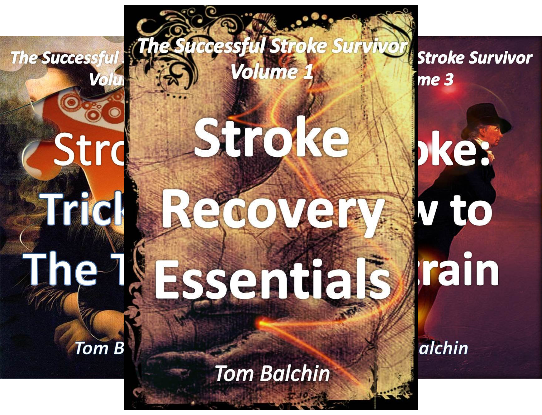 The Successful Stroke Survivor (5 Book Series)