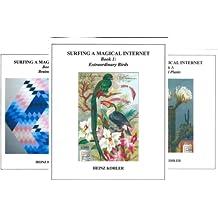 SURFING A MAGICAL INTERNET (18 Book Series)