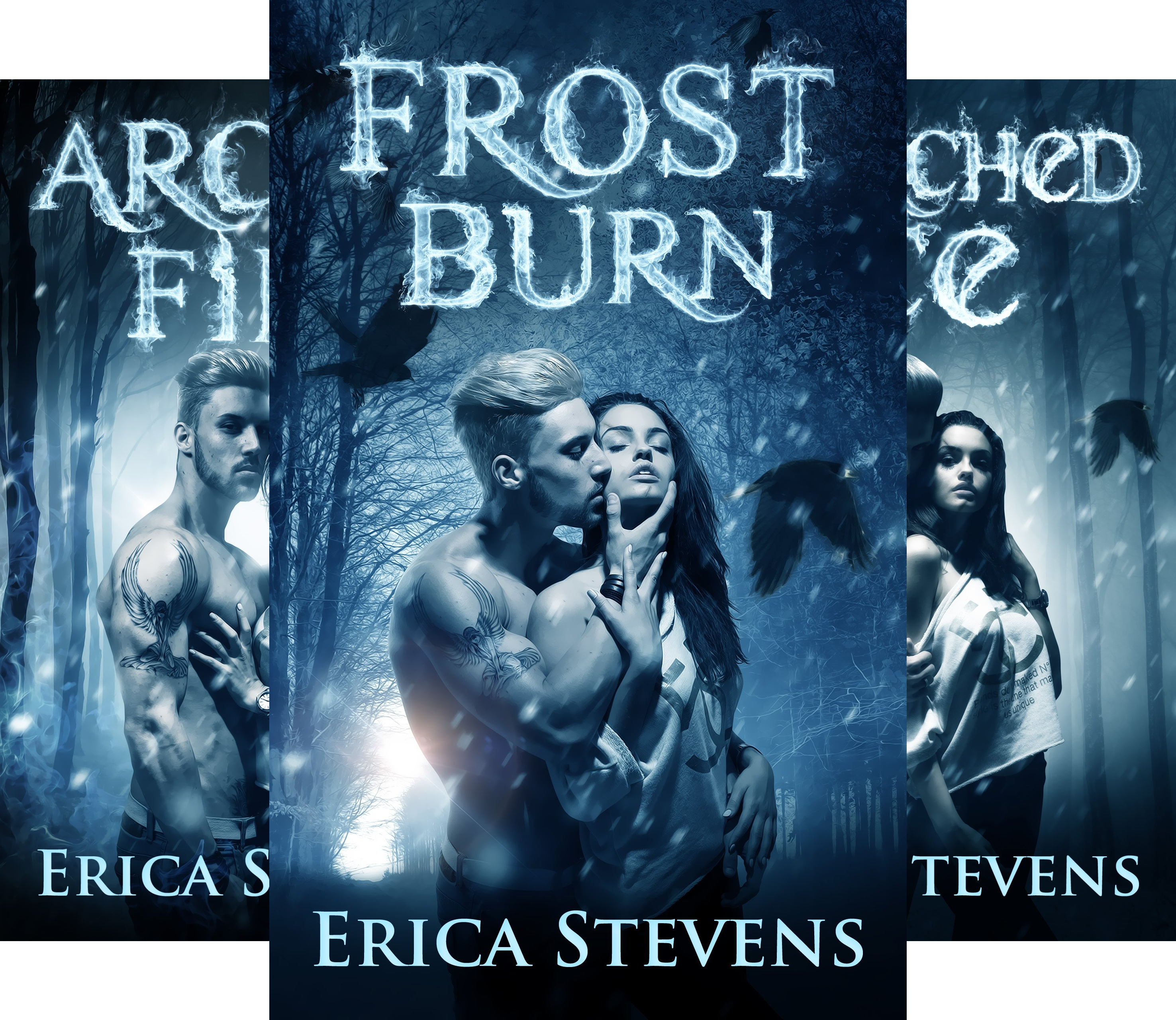 The Fire and Ice Series (3 Book Series)