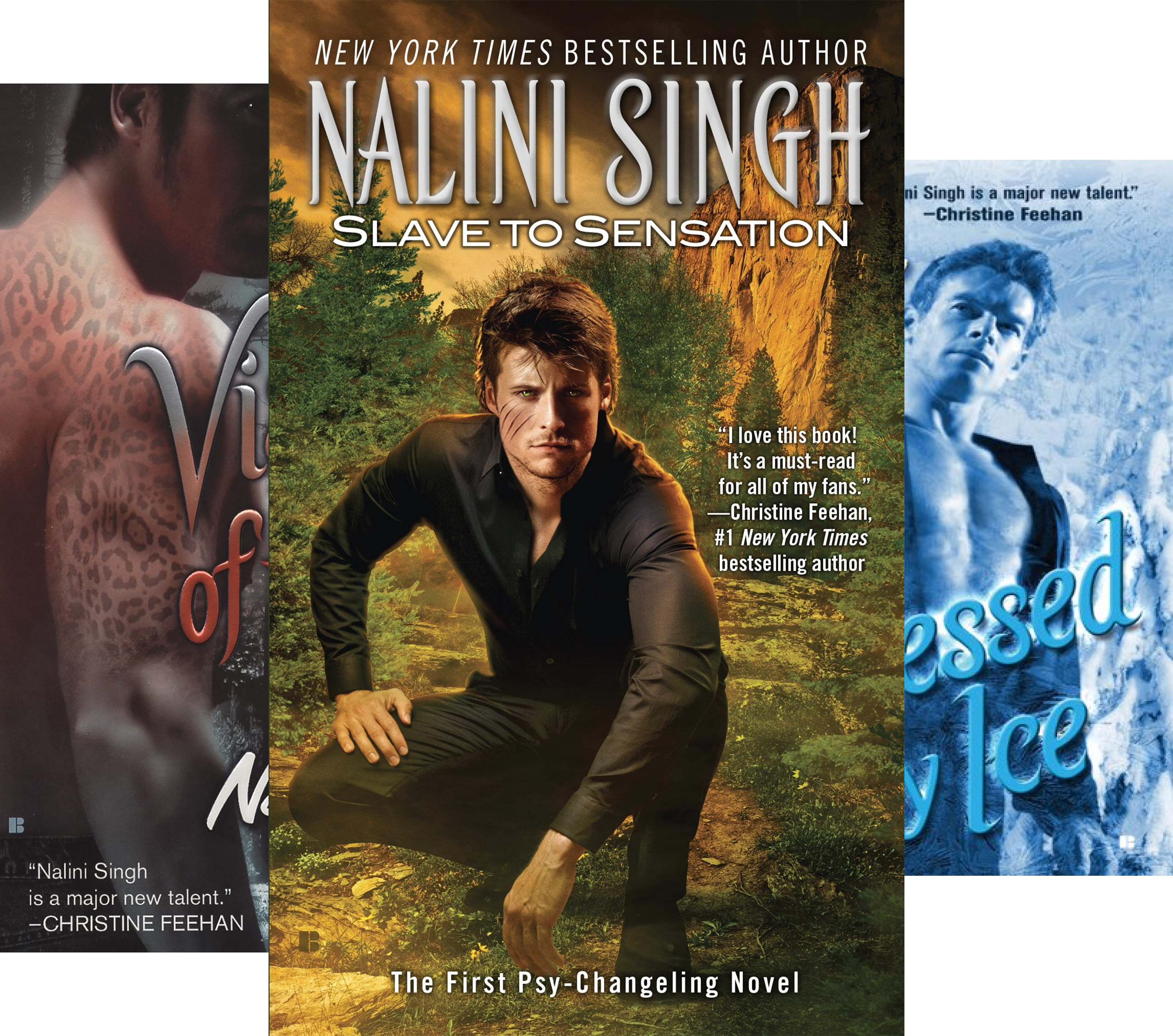Psy/Changeling Series (15 Book Series) Psy Changeling Serie