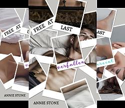 Free at last (Reihe in 3 Bänden) von  Annie Stone