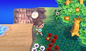 Screenshot: Animal Crossing - New Leaf