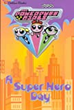 Superhero Day (Powerpuff Girls (Golden))