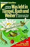 Was lebt in Tümpel, Bach und Weiher? Pflanzen und Tiere unserer Gewässer