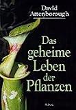 Das geheime Leben der Pflanzen.