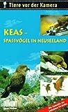 Tiere vor der Kamera: Keas - Spaßvögel in Neuseeland