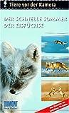Tiere vor der Kamera: Der schnelle Sommer der Eisfüchse