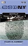 CSI: NY, Bd. 3: Sintflut.