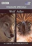 Wildlife Specials 01 - Wolf / Adler