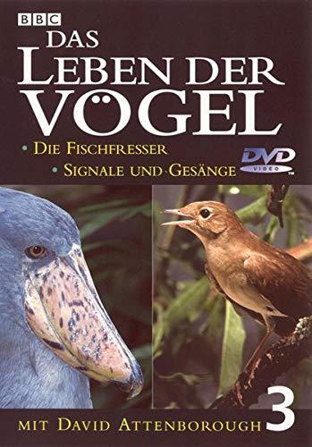 Das Leben der Vögel