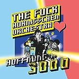 The Fuck Hornisschen Orchestra: Hoffnung 3000