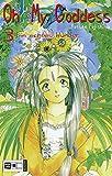 Oh! My Goddess, Bd.3, Ein echtes Wunder