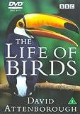 David Attenborough's Life Of Birds