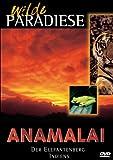Anamalai - Der Elefantenberg Indiens