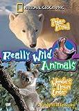 Polar Prowl / Wonders Down Under