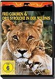 Drei Strolche in der Wildnis (Spielfilmversion)