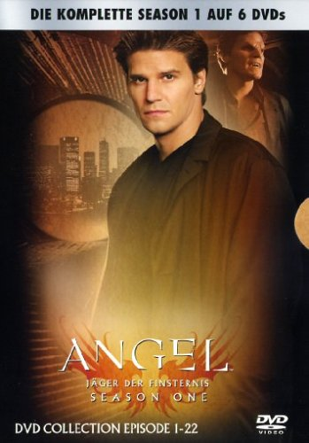 Angel - Jäger der Finsternis Season 1 (6 DVDs)