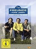 Freunde fürs Leben - Staffel 1 (4 DVDs)