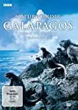 Naturwunder Galapagos