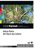 NZZ Format: Kokos-Palme: Der Baum des Lebens