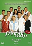 In aller Freundschaft - Staffel  9, Teil 1 (6 DVDs)