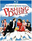 Pushing Daisies - Staffel 2 [Blu-ray]