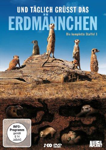 Und täglich grüßt das Erdmännchen Staffel 1 (2 DVDs)