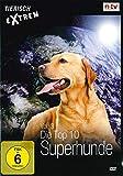 Vol. 3 - Die Top 10 Superhunde