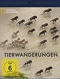 National Geographic - Das große Wunder der Tierwanderungen, Teil 1 [Blu-ray]