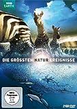 Uncut, 2 DVDs