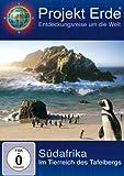 Südafrika: Im Tierreich des Tafelbergs